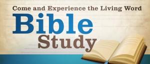 STM-bible-study